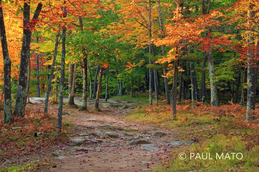 Photography of Michigan by Paul Mato